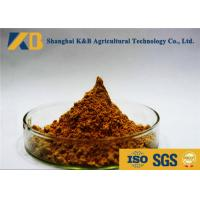 Cheap Anchovy Material Fish Meal Powder Make Animals More Healthy And Stronger wholesale