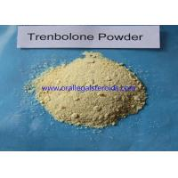 Cheap Trenbolone Base Trenbolone Powder / Bodybuilding Injectable Tren Muscle Supplement wholesale