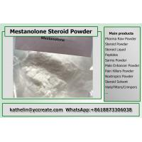 Cheap Steroid Hormone Powder Mestanolone / Methylandrostanolone For Bodybuilding CAS 521-11-9 wholesale