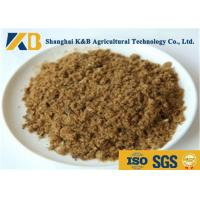 Buy cheap GMP Pure Natural Fish Meal Powder / Animal Feed Additives 65% Protein Content from wholesalers