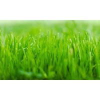 Cheap Lawn Service Austin Offer Weed Control And Pre Emergent Weed Control wholesale