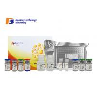 Cheap Strong Sensitivity ASB2 Sandwich ELISA Kit 96 Wells / 48 Wells For Research 2 - 8°C Storage wholesale