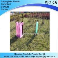 Cheap UV Stabilize Corrugated Plastic Plant Protector wholesale