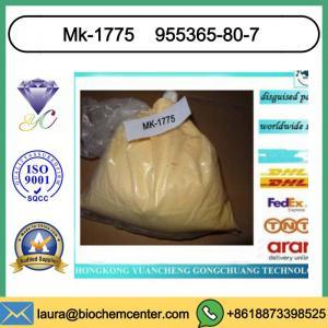Cheap Sarm Supplement Bodybuilding Mk-1775 For Cancer Treatment CAS 955365-80-7 wholesale