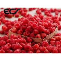 Cheap Antioxidant Organic Food Ingredients Dehydrated Raspberry Powder For Reduce Wrinkles wholesale