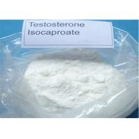 Cheap 99% Testosterone Isocaproate Raw Steroid Powder Test Isocaproate 15262-86-9 muscle gain wholesale