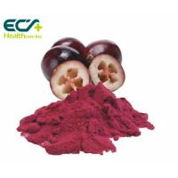 Cheap Red Cranberry Fruit Powder , Natural Food Supplement Powder Prevent Cancer wholesale
