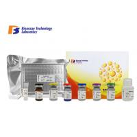 Cheap Sandwich Porcine ELISA Kit Syndecan - 1 Customized With 2 Hours Assay Time wholesale
