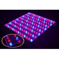 Cheap 28W LED grow panel with 5050 SMD with red / blue 6 square meters wholesale
