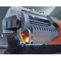 Cheap DZL Industrial Biomass Boiler , Wood Fired Steam Boiler Easy Operation wholesale