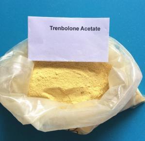 Cheap CAS 10161-33-8 Trenbolone Steroids , Injectable Parabolan Trenbolone Enanthate for Bodybuilding wholesale