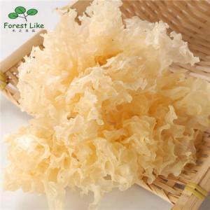 High Quality Dried Organic Tremella Fuciformis / Silver Ear mushroom / White Fungus