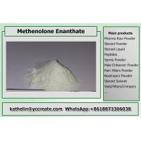 Cheap Steroid Raw Powder Methenolone Enanthate / Primo E For Steroid Cycle CAS 303-42-4 wholesale