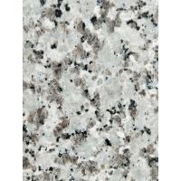 Cheap Decorative Granite Stone Tiles / White Galaxy Granite Floor Tiles wholesale