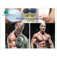 Buy cheap Anabolic Hormone Testosterone Powder Test Propionate White Color For Bodybuilding from wholesalers