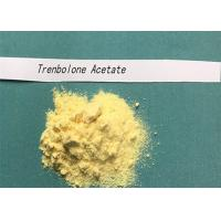 Buy cheap CAS NO 10161-34-9 Tren Anabolic Steroid Trenbolone Acetate Powder Hormone For Muscle Building from wholesalers