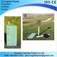 Cheap Corrugated Plastic Tree Guard wholesale