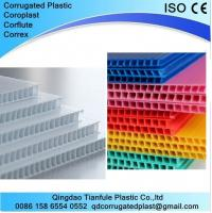 Cheap 2440×1220mm Coroplast Sheet wholesale