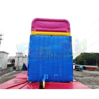 Cheap Waterproof Commercial Inflatable Slide / Nemo Inflatable Dry Slide wholesale