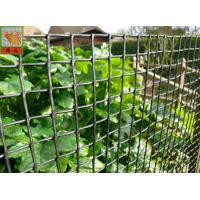 Cheap Customized Color Plastic Plant Support Mesh / Garden Net For Climbing Plants wholesale
