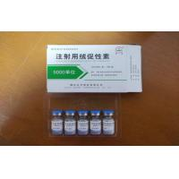 Human Chorionic Gonadotropin Hormone HCG Supplement Improve Exercise Tolerance