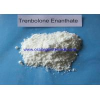 Cheap Athletes Muscle Building Tren Steroid Injectable , 10161 34 9 Tren Bodybuilding Supplement  wholesale