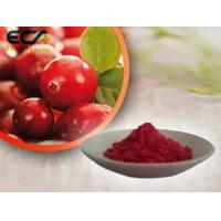 Cheap Beauty Effect Organic Food Ingredients Red Fine Oxycoccos Cranberry Extract Powder wholesale