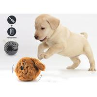 Durable Battery Operated Dog Toy Randomly Jumping For Entertainment / Exercise