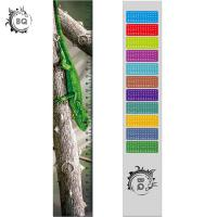 Cheap High Definition Motion 3D Lenticular Ruler Animal Design For Students wholesale