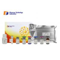 Cheap Disposable 96 Wells Size Bovine ELISA Kits High Sensitivity And Specificity wholesale