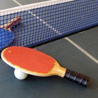 China Table Tennis Nets Ping Pong Table Net Green Blue Nylon Customized Color on sale