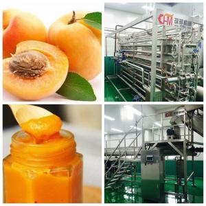 Cheap Peach \ Apricot \ Glass Bottle Beverage Production Line Per Hour wholesale