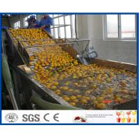 Buy cheap Energy Saving Orange Processing Line with Glass / PET Bottle Filling Machine from wholesalers