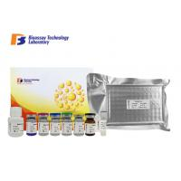 Cheap Human Immunosorbent Sandwich Assay Kit 96 Wells AGBL3 With High Specificity wholesale