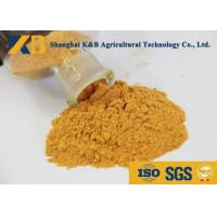 Cheap Plant Corn Protein Powder / Natural Protein Supplements No Visible Impurity wholesale