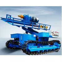Buy cheap Water Well Drilling Rig of Drilling Depth 300 meters Track Mounted with 150mm from wholesalers