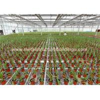 Cheap Multifunctional Agricultural Buildings And Structures Professional Customized wholesale