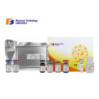 Cheap High Precision Bovine ELISA Kits BHBA 96 Well Plate For Laboratory Research wholesale