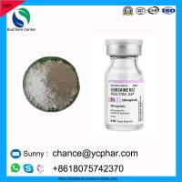Cheap 99% Pharmaceutical Raw Materials Lidocaine Hydrochloride CAS 73-78-9 For Local Dental Anesthesia wholesale