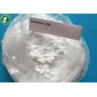Cheap Testosterone Sustanon 250 Injectable Anabolic Steroids Powder For Bodybuilding wholesale