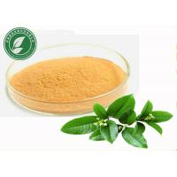 Cheap Natural Plant Extract Tea Polyphenol For Anti Cancer CAS 84650-60-2 wholesale