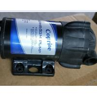 Cheap ro bump 24v dc ro booster pump for ro system  50GPD wholesale