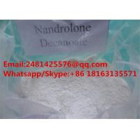 Cheap Muscle Growth Nandrolone Steroids DECA Durabolin / Nandrolone Decanoate CAS 360-70-3 wholesale