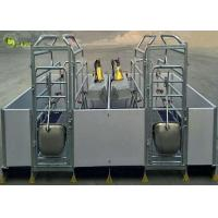 Cheap Welding Pig Farrowing Crate , Turn Around Farrowing Crates PVC Fence wholesale