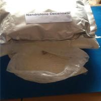 Cheap 360-70-3 Nandrolone Decanoater Menopausal Women With Osteoporosis / Bodybuilding Anemia Androgen White Powder wholesale