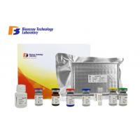 Cheap Oem 96 Wells PDGF Sandwich Porcine ELISA Kit With High Precision And Specificity wholesale