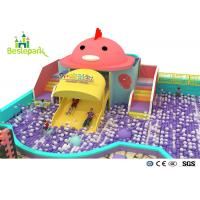 Cheap Rainbow Chicks Kids Plastic Indoor Playground With Slide Multi - Functional wholesale