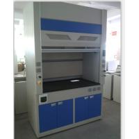 Full electrolytic Steel Structure Ventilation Cabinet For Laboratory Equipment