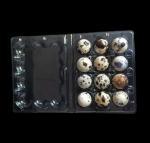 Cheap Disposable plastic quail egg tray 12 holes quail egg tray plastic egg tray for quail eggs 12 slots wholesale
