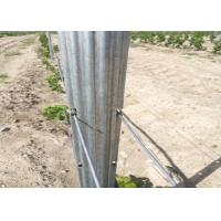 Cheap Professional Vineyard Trellis Stakes , Plant Support Pole Corrosion Resistance wholesale